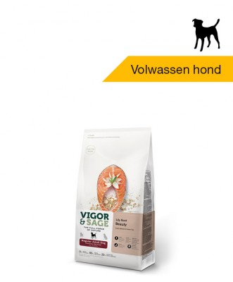 Vigor & Sage Lily Root <BR>Beauty Regular <BR>Adult Dog - 2kg
